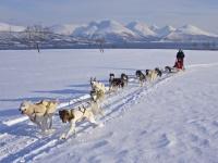 NORVEGIA inverno