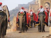 INDIA: RAJASTHAN